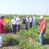 Azerbeycanlı Üreticilerimizin Ziyareti